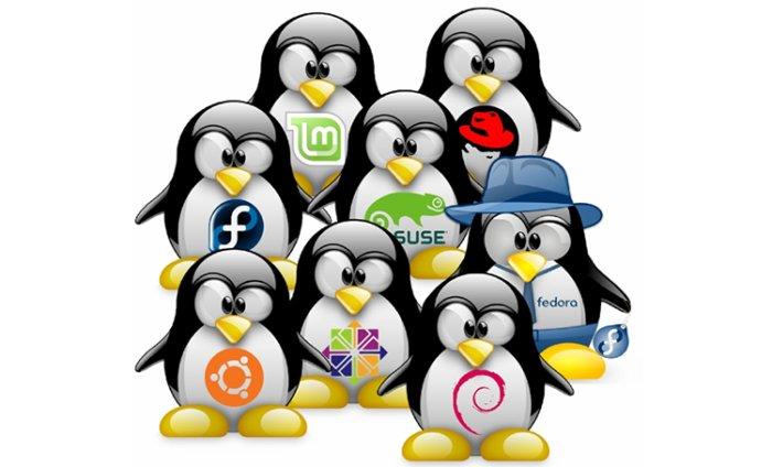 linux-distros-100724403-large