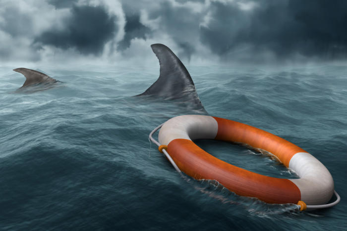 risk_shark-attack_stormy-seas_life-preserver_rescue-100753417-large